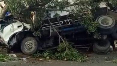 Photo of Truck Tabrak Pohon Sopir Tewas Di Tempat.