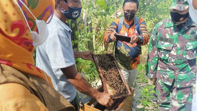 Photo of Kodim Palangka Raya Optimalkan Peran Babinsa Dalam Mendukung Ketahanan Pangan Di Wilayah